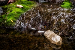 Water bottle floating in a small stream