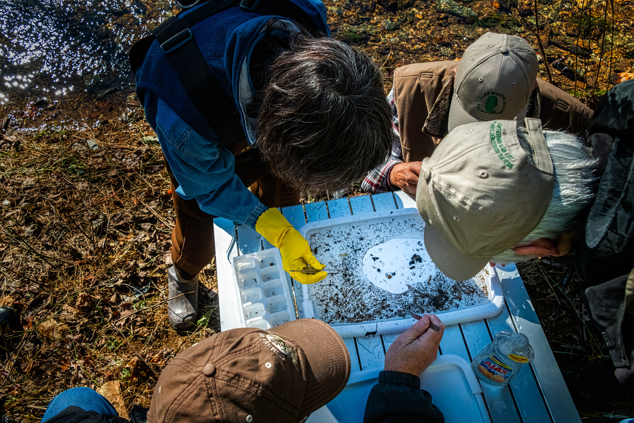 Locating the Macroinvertebrates