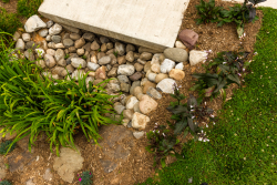 Garden for Stormwater Runoff
